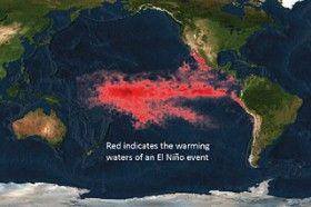 Эль-Ниньо: пожары и засухи впереди