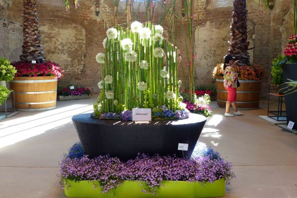 BUGA 2015: витаминно-цветочный рай