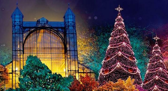Christmas Garden Berlin - место, чтобы верить в рождественские чудеса