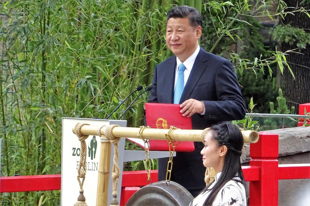 Симпатичные китайские дипломаты Мечтатель и Дорогуша