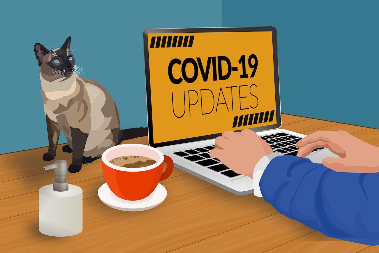COVID 19 в Берлине: обоснованная обеспокоенность