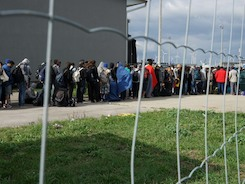 Две недели в лагере для беженцев по ошибке