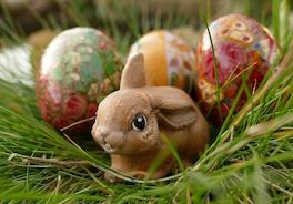 Яйца и зайцы: откуда это все взялось?