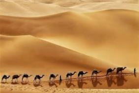 Пустыни поглощают углекислый газ?