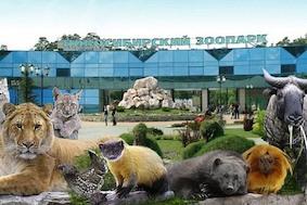 Зоопарк: идеи, проекты, проблемы, будущее…