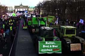 Необычное начало «Зеленой недели» в Берлине