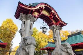 Берлинскому зоопарку 175 лет! Поздравляем!