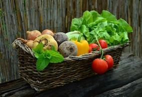 Простейшие овощи – «кладезь витаминов»