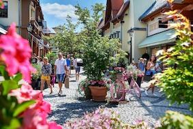 Лето во Франкфурте-на-Майне