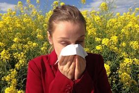 Внимание: аллергия у порога!