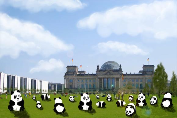 Панды путешествуют табором