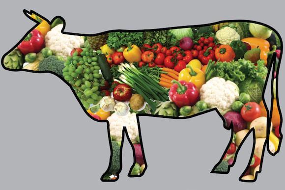 «Овощное мясо»: ни аллергии, ни лишнего веса...