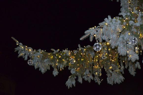 Рождественское волшебство начинается...