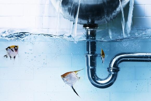 Право на воду