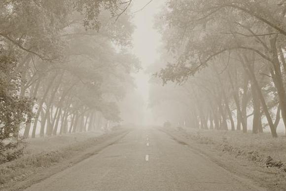 «Дух места» Юргиса Занаревского
