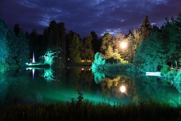 Волшебство в ботаническую ночь