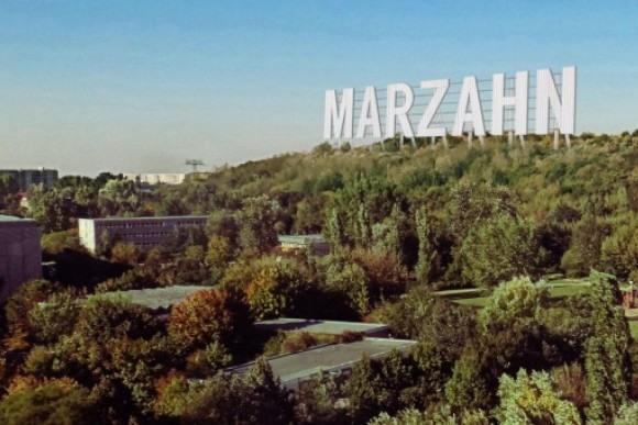 Марцан получит свою «голливудскую» табличку?