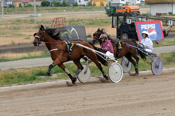 DRF-2015 Berlin: лошадиные бега на ипподроме Карлсхорст