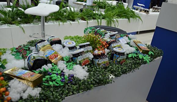 «Зелёная Неделя 2018»: весь мир за накрытым столом