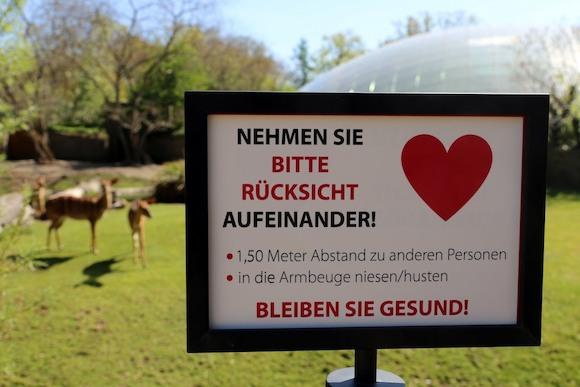 Сенат Берлина смягчает меры